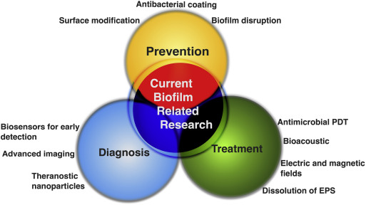 Antibiofilm Agents: From Diagnosis to Treatment and Prevention