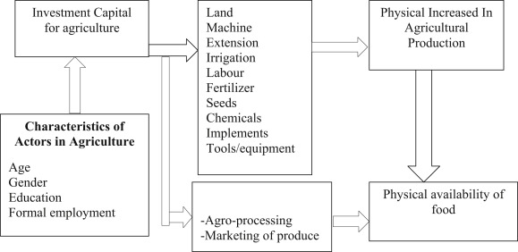 Formal sector workers' participation in urban agriculture in