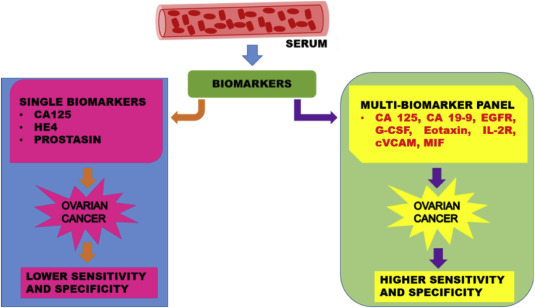 Multi Biomarker Panel Signature As The Key To Diagnosis Of Ovarian Cancer Sciencedirect
