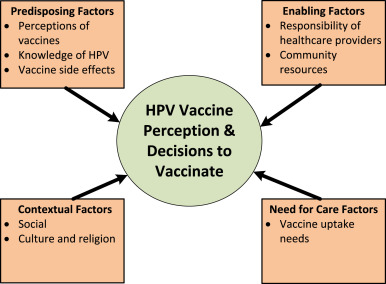 Hpv vaccine nz pros and cons, Human papillomavirus vaccine pros and cons