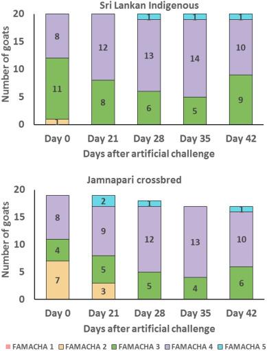 Responses of Sri Lankan indigenous goats and their Jamnapari