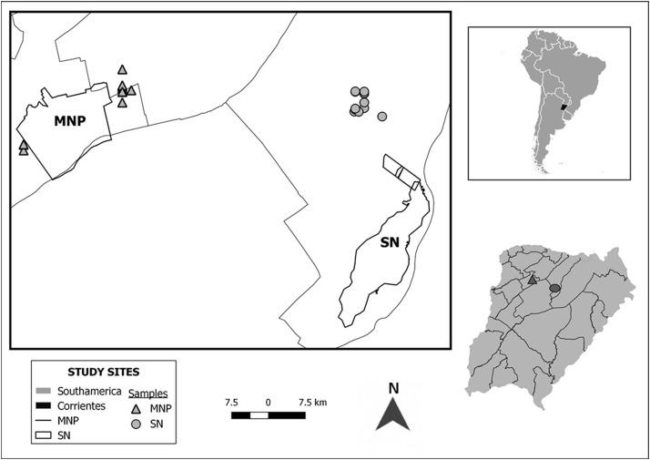 helmintos habitat