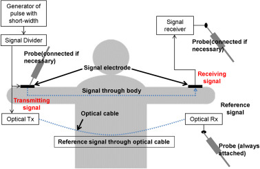 Review of capacitive coupling human body communications