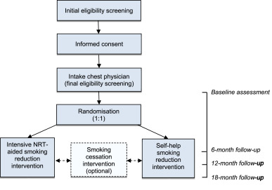 Effectiveness of intensive smoking reduction counselling plus