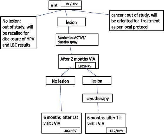 Efficacy of antiviral drug AV2 in the treatment of human