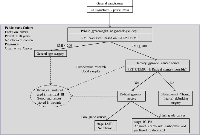 Searching For New Biomarkers In Ovarian Cancer Patients Rationale And Design Of A Retrospective Study Under The Mermaid Iii Project Sciencedirect