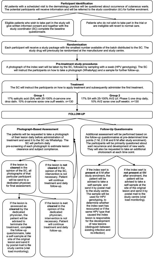 hpv treatment study)