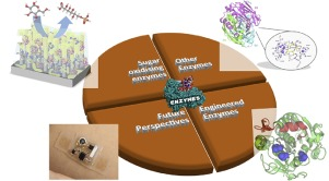Image, graphical abstract