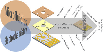 Microfluidics and electrochemistry: an emerging tandem for next