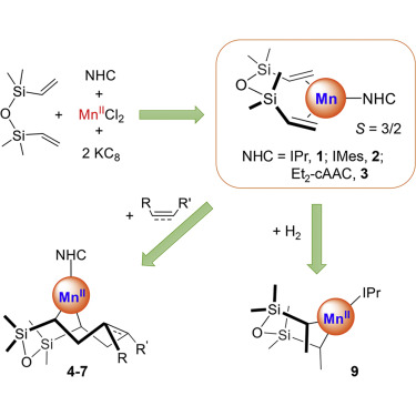 The Stabilization of Three-Coordinate Formal Mn(0) Complex