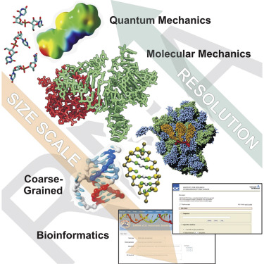 Modeling, Simulations, and Bioinformatics at the Service of RNA