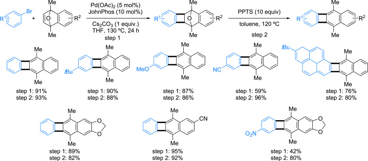 Application of Palladium-Catalyzed C(sp2)–H Bond Arylation to the