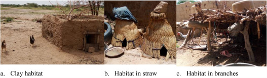 Indigenous Chicken production in Niger - ScienceDirect