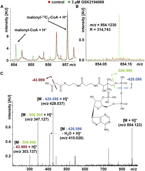 Mechanistic MALDI-TOF Cell-Based Assay for the Discovery of