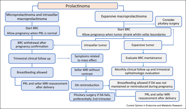 adenoma hypophysis treatment