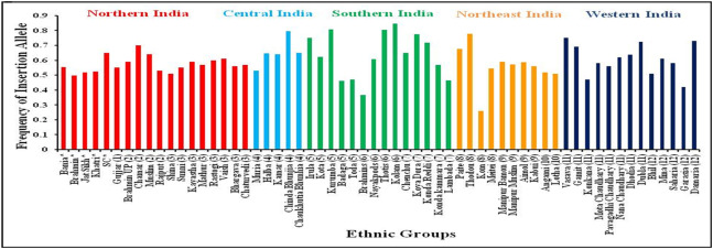main ethnic groups in india