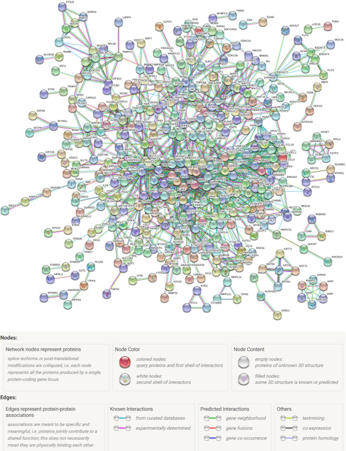 Prediction of genes and protein-protein interaction networking for