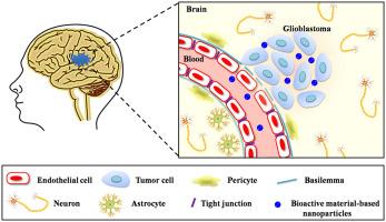 Development of bioactive materials for glioblastoma therapy