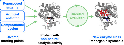 design and evolution of enzymes for non natural chemistry