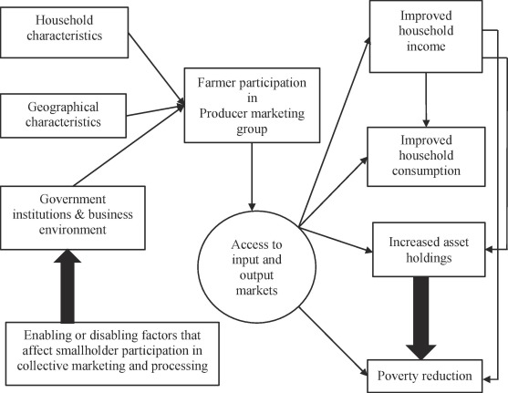 The effect of collective action on smallholder income and
