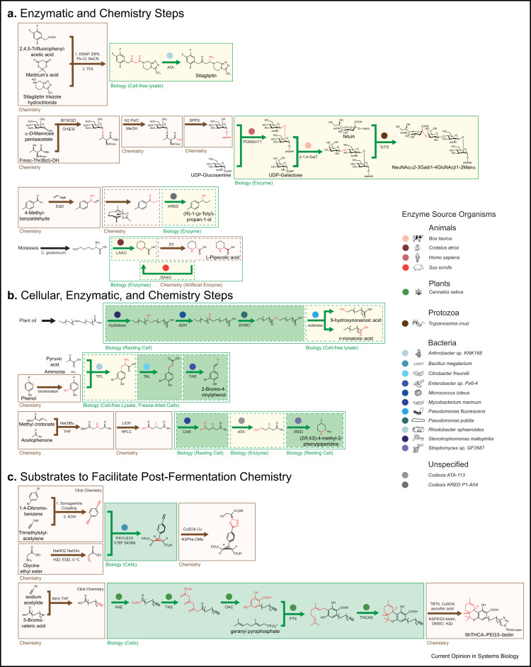 Retrosynthetic design of metabolic pathways to chemicals not