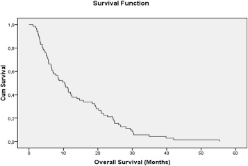 Clinical outcome of patients with glioblastoma multiforme: Single