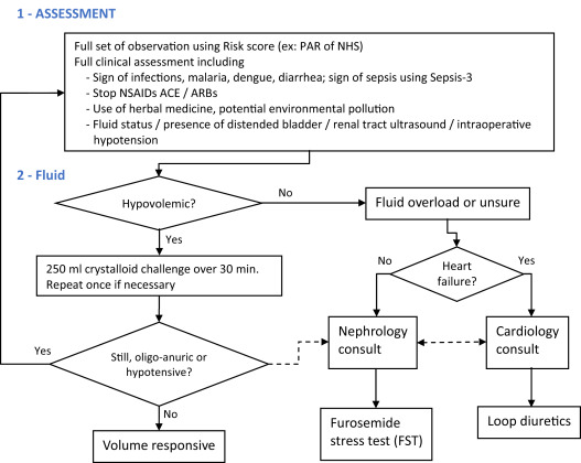 Prevention And Therapy Of Acute Kidney Injury In The Developing World Sciencedirect