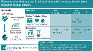 Kidney Tubular Damage and Functional Biomarkers in Acute