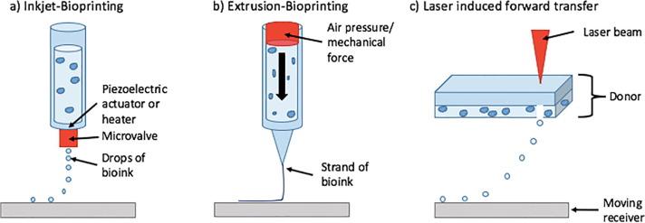 Nydus One Syringe Extruder (NOSE): A Prusa i3 3D printer
