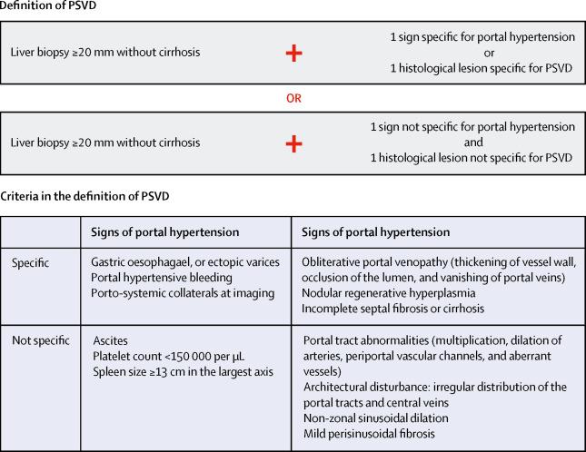 Porto-sinusoidal vascular disease: proposal and description