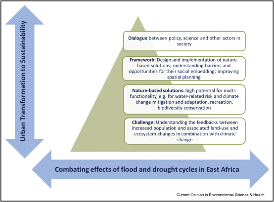 Nature-based solutions for flood-drought risk mitigation in