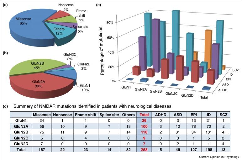 De novo mutations and rare variants occurring in NMDA