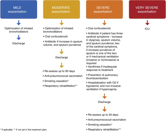 COPD exacerbations: management and hospital discharge - ScienceDirect