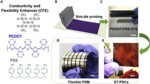 A Mechanically Robust Conducting Polymer Network Electrode