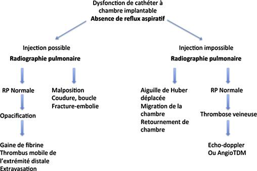 Revue Iconographique Des Aspects Normaux Et Pathologiques Des