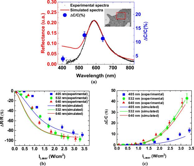 Plasmonic photocapacitance of self-assembled gold colloidal