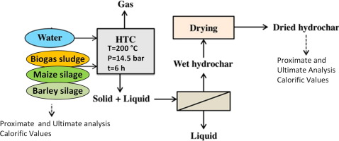Hydrothermal carbonization of agricultural residues: A case