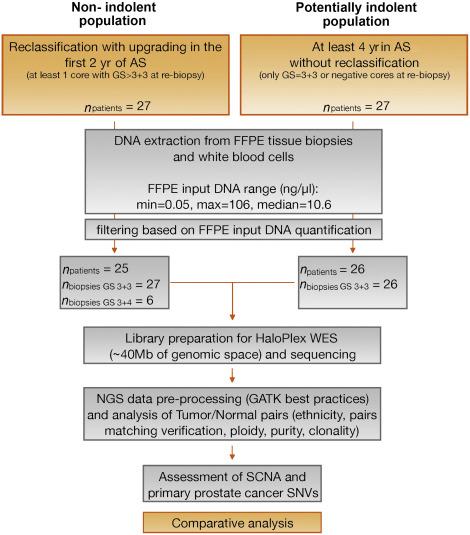 adenocarcinoma de próstata gleason 3 3 6 descarga
