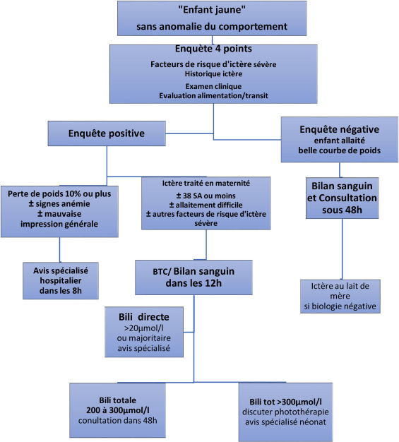 Ictere A Bilirubine Non Conjuguee Du Nouveau Ne Apres Sortie De Maternite De La Physiopathologie A La Pratique Sciencedirect