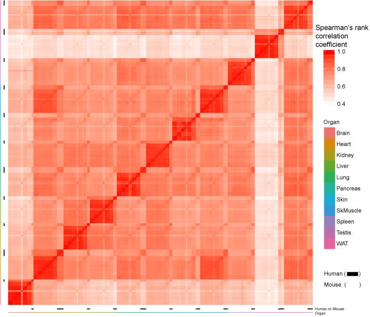 The Body-wide Transcriptome Landscape of Disease Models