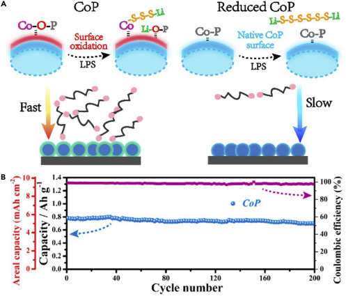 Advances in Cathode Materials for High-Performance Lithium