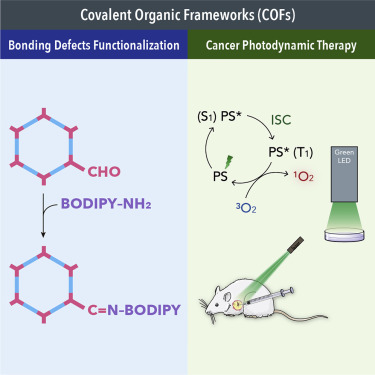 Bodipy Decorated Nanoscale Covalent Organic Frameworks For