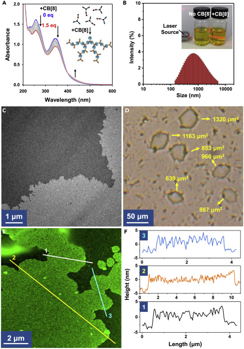 Dynamic Adaptive Two-Dimensional Supramolecular Assemblies for On