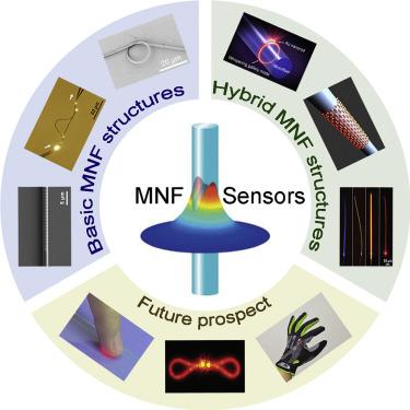 Micro-/Nanofiber Optics: Merging Photonics and Material Science on  Nanoscale for Advanced Sensing Technology - ScienceDirect