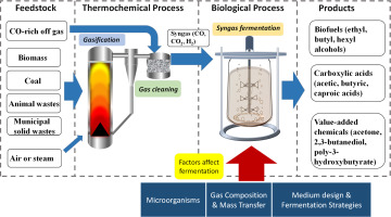 Syngas fermentation process development for production of