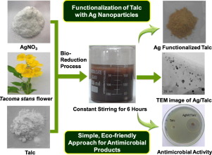 Tecoma stans flower extract assisted biogenic synthesis of