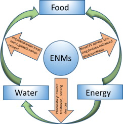 32401e6f5b Engineered nanomaterials (ENMs) and their role at the nexus of Food ...