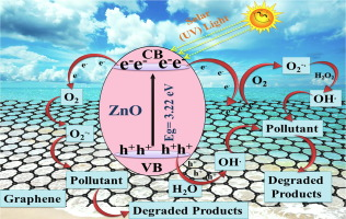 Photocatalytic Water Decontamination Using Graphene And Zno Coupled Photocatalysts A Review Sciencedirect