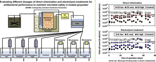 Comparing the anti-bacterial performance of chlorination and