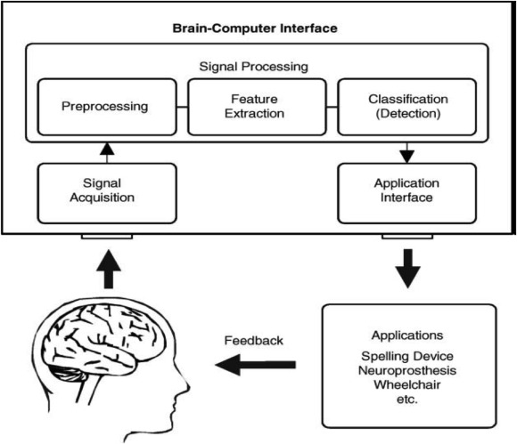 Signal processing techniques for motor imagery brain